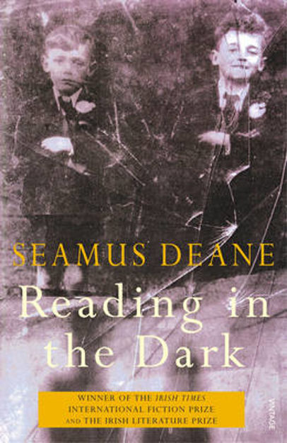 Picture of Reading in the Dark