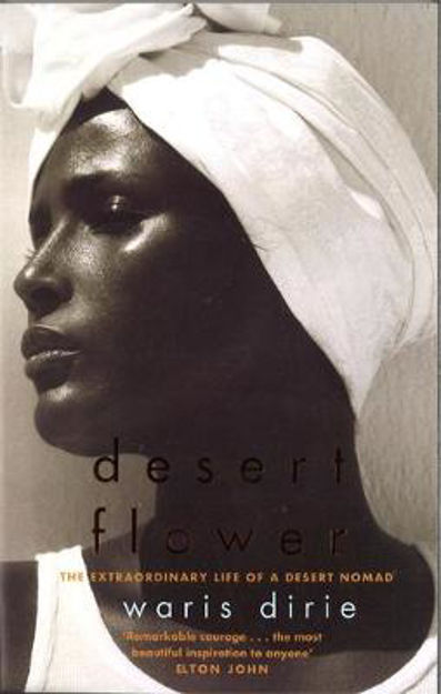 Picture of Desert Flower