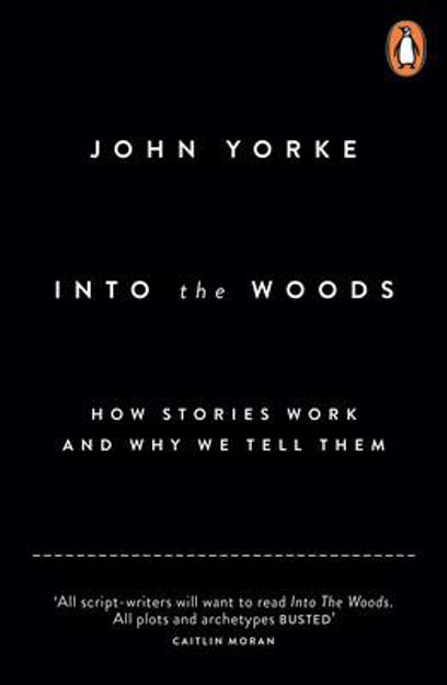 Picture of Into the Woods: How Stories Work and Why We Tell Them