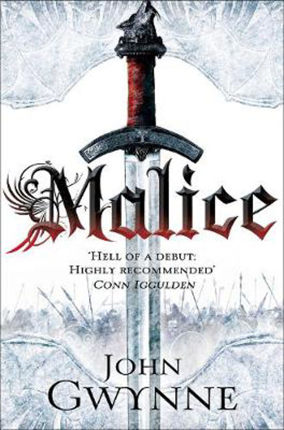 Picture of Malice: Book One of the Faithful and the Fallen