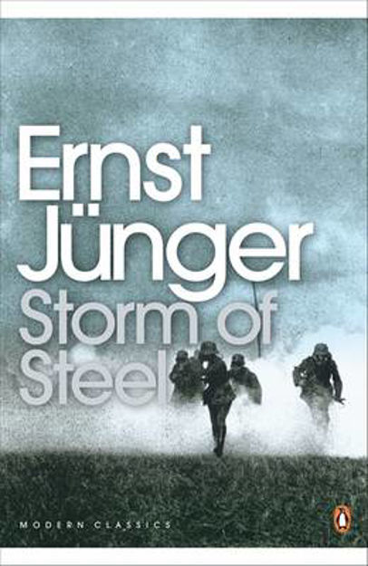 Picture of Storm of Steel