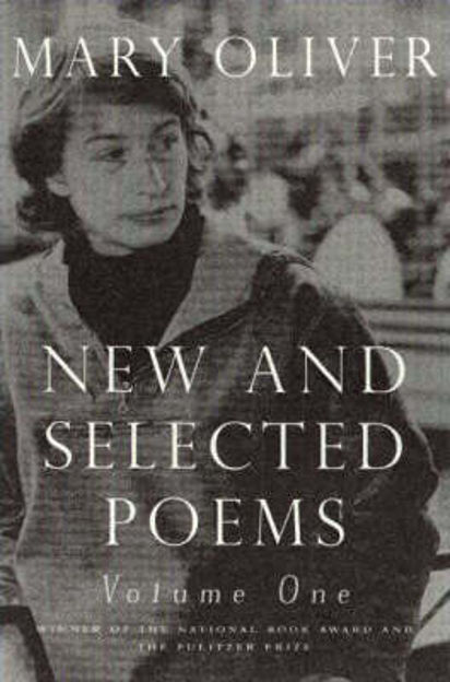 Picture of New and Selected Poems: v. 1