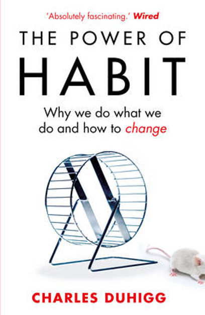 Picture of The Power of Habit: Why We Do What We Do, and How to Change