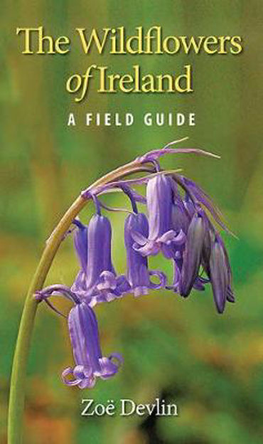 Picture of The Wildflowers of Ireland: A Field Guide