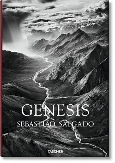 Picture of Genesis