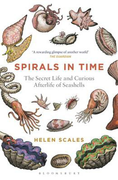 Picture of Spirals in Time