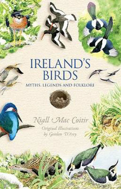 Picture of Ireland's Birds Myths Legends And Folklore