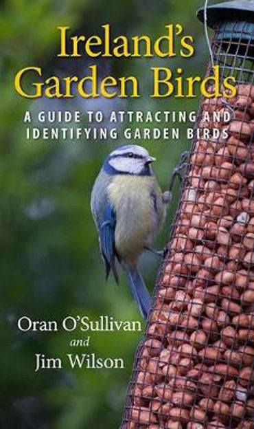 Picture of Ireland's Garden Birds