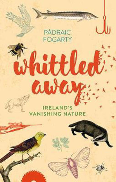 Picture of Whittled Away: Ireland's Vanishing Nature