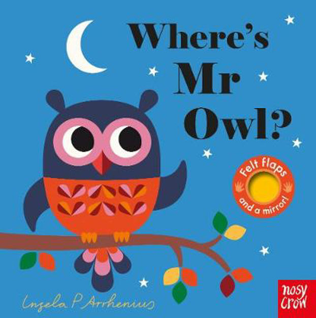 Picture of Where's Mr Owl?