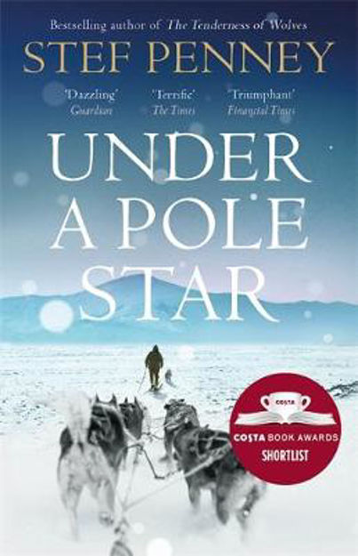 Picture of Under a Pole Star