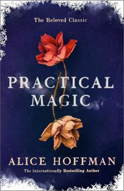 Picture of Practical Magic