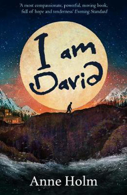 Picture of I am David