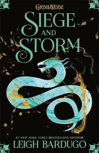 Picture of Siege and Storm