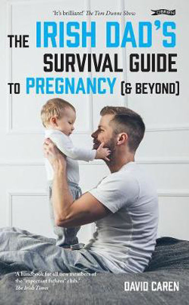 Picture of The Irish Dad's Survival Guide to Pregnancy [& Beyond]