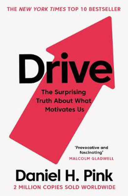 Picture of Drive: The Surprising Truth About What Motivates Us