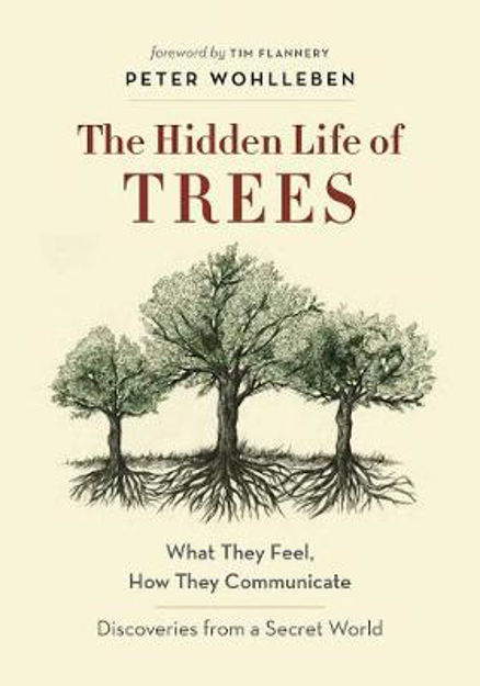 Picture of The Hidden Life of Trees: A Visual Celebration of a Magnificent World