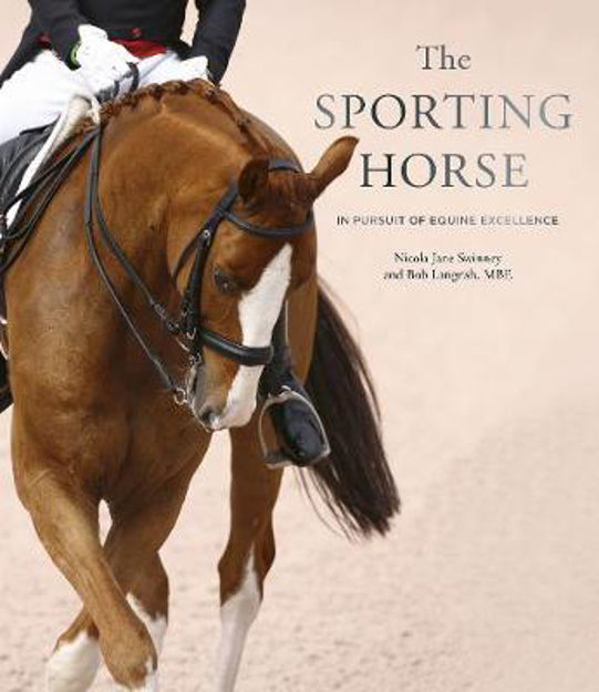 Picture of Sporting Horse