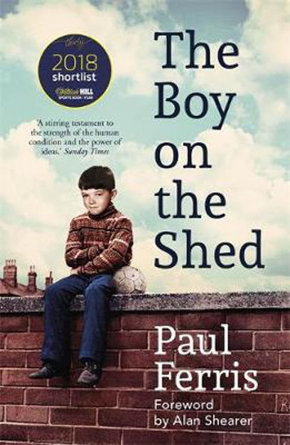Picture of BOY ON THE SHED