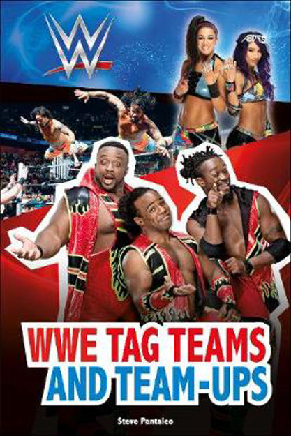 Picture of WWE Tag-Teams and Team-Ups