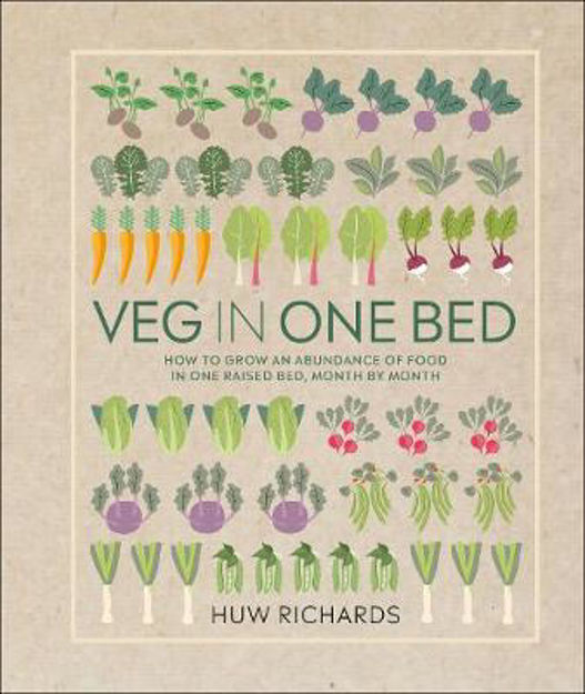 Picture of Veg In A Bed