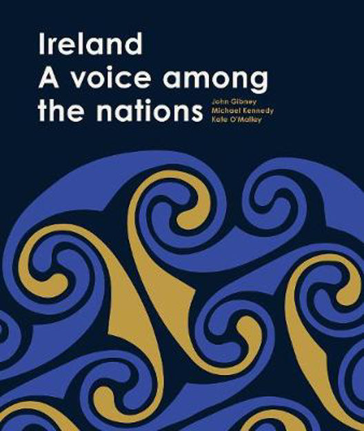Picture of Ireland: A Voice among the Nations