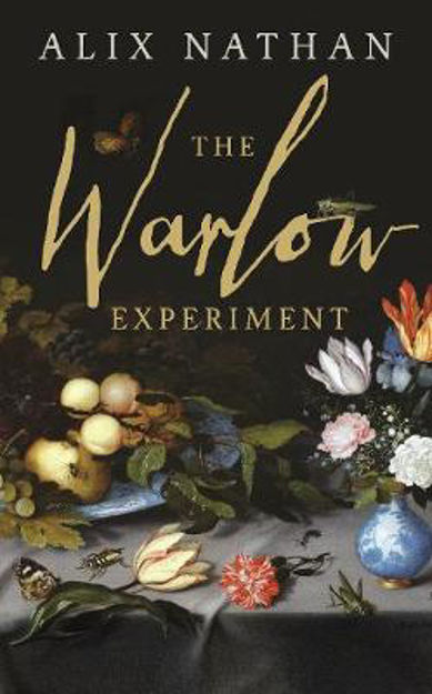 Picture of The Warlow Experiment