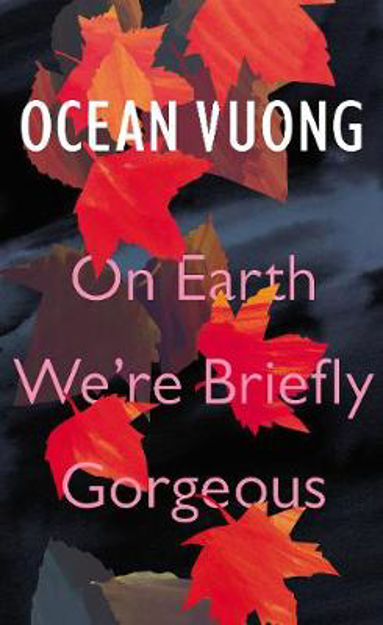 Picture of On Earth We're Briefly Gorgeous