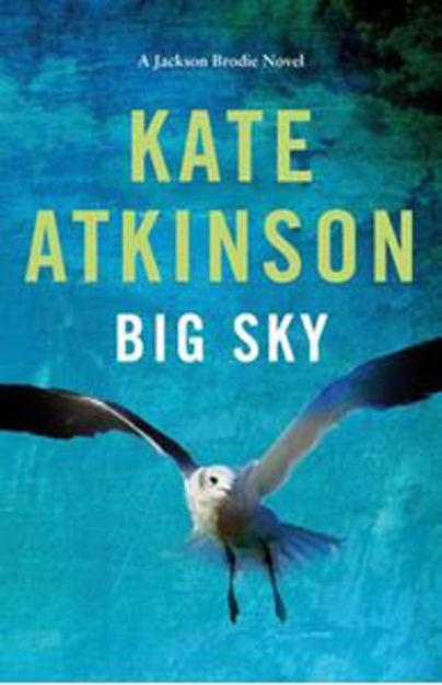 Picture of Big Sky (Hardback)