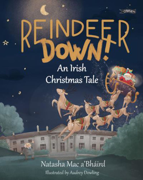 Picture of Reindeer Down!: An Irish Christmas