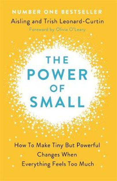 Picture of The Power of Small: Making Tiny but Powerful Changes when Everything Feels too Much