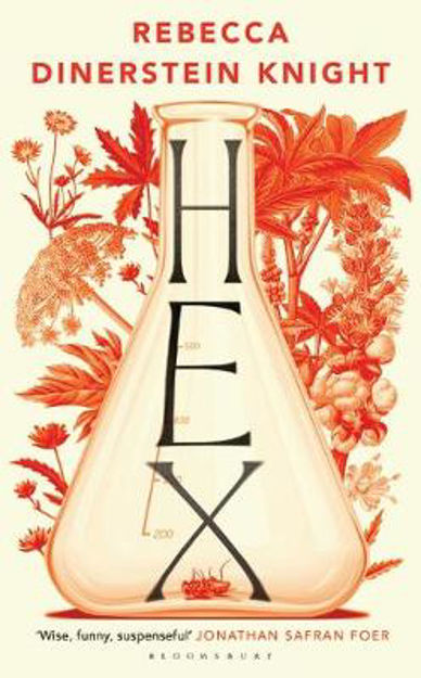 Picture of Hex