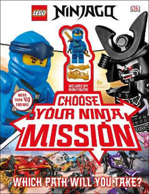Picture of Ninjago lego Which Path will you take ?