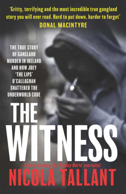 Picture of The Witness