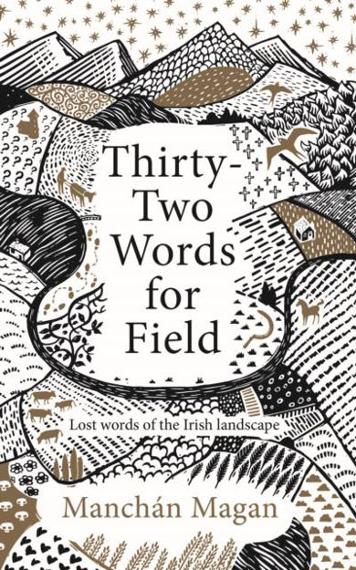 Picture of Thirty-Two Words for Field