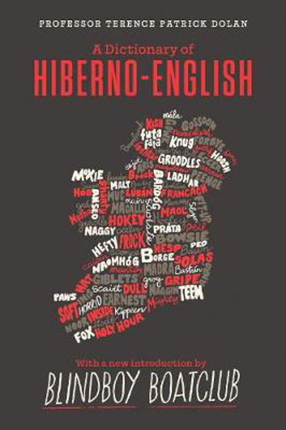 Picture of A Dictionary of Hiberno English