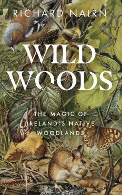 Picture of Wild Woods