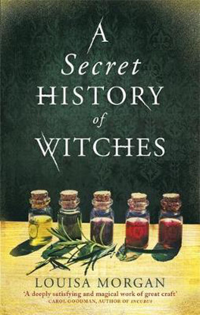 Picture of Secret History of Witches  A