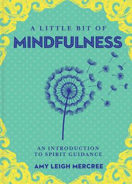 Picture of Little Bit of Mindfulness