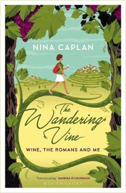 Picture of Wandering Vine