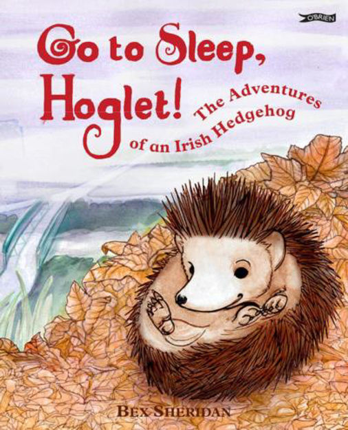 Picture of GO TO SLEEP HOGLET