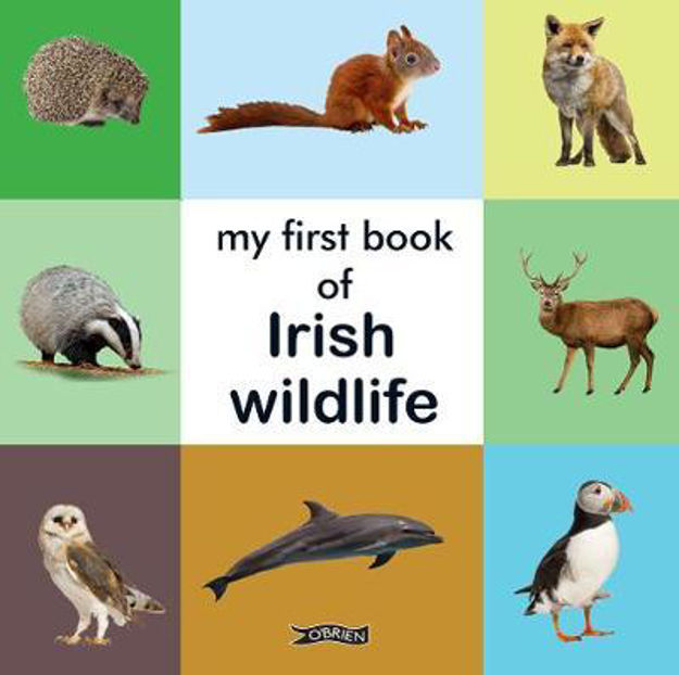 Picture of My First Book of Irish Wildlife