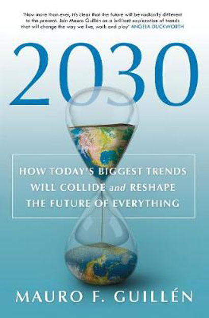 Picture of 2030: How Today's Biggest Trends Will Collide and Reshape the Future of Everything