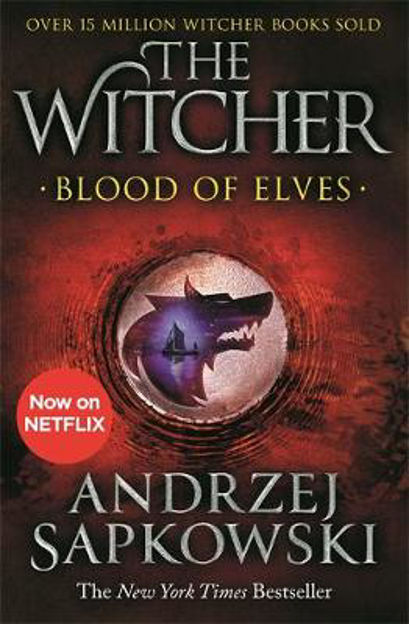Picture of Blood of Elves: Witcher 1 - Now a major Netflix show