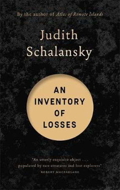 Picture of An Inventory of Losses