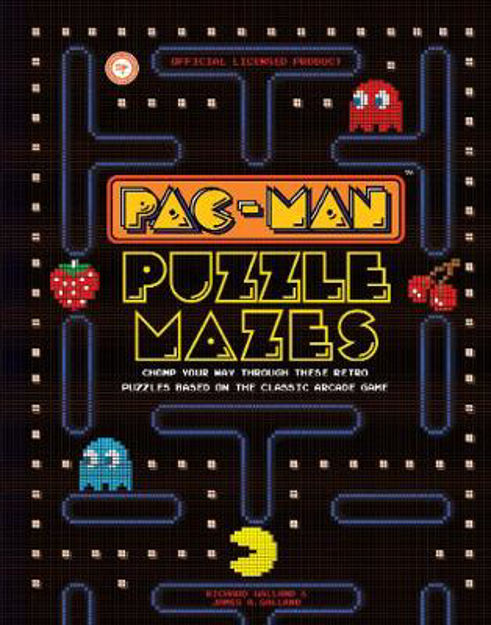 Picture of Pac-Man Puzzle Mazes