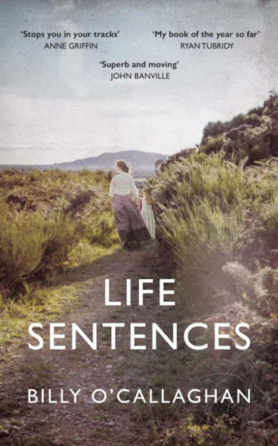 Picture of Life Sentences