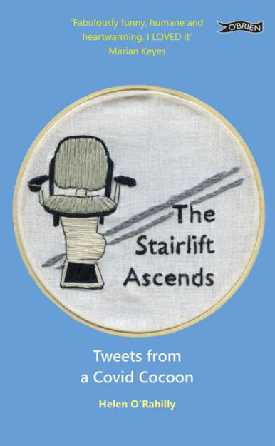 Picture of The Stairlift Ascends ...: Tweets from a Covid Cocoon