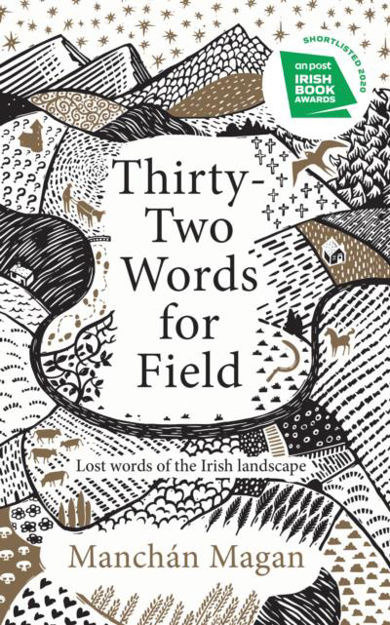 Image result for thirty two words for field - manchán magan