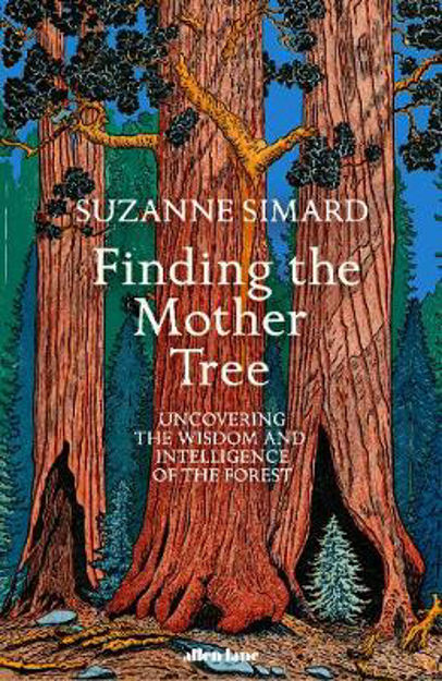Picture of Finding the Mother Tree: Uncovering the Wisdom and Intelligence of the Forest